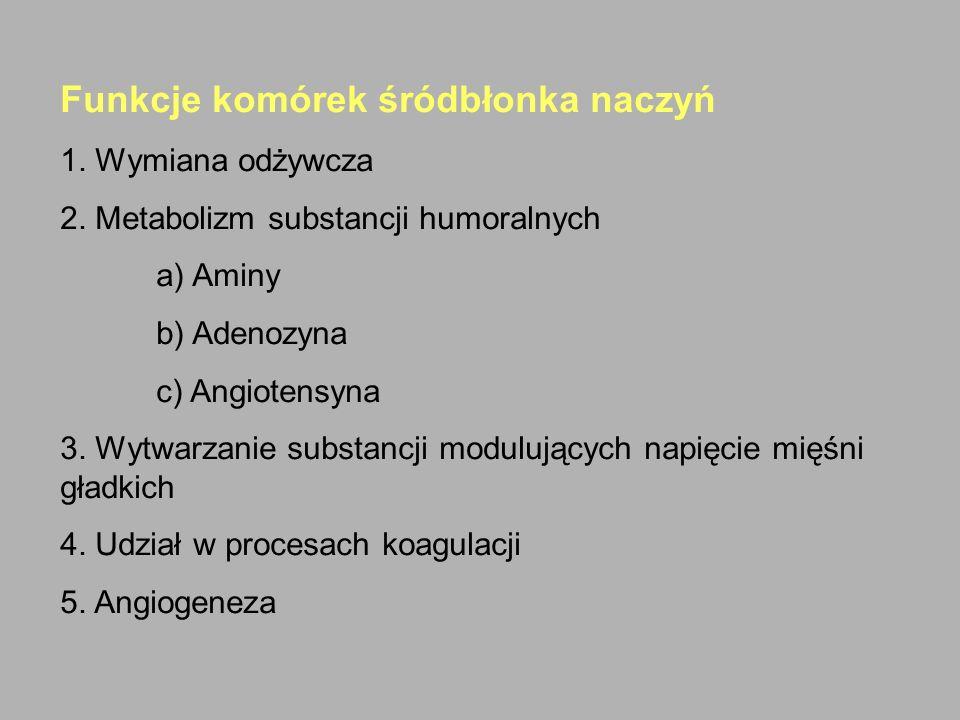 Funkcje komórek śródbłonka naczyń