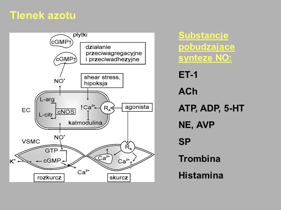 Tlenek azotu Substancje pobudzające syntezę NO: ET-1 ACh