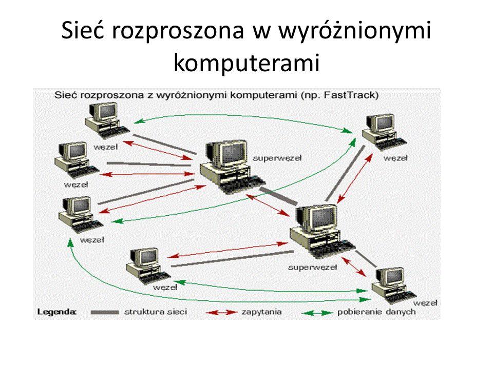 Sieć rozproszona w wyróżnionymi komputerami