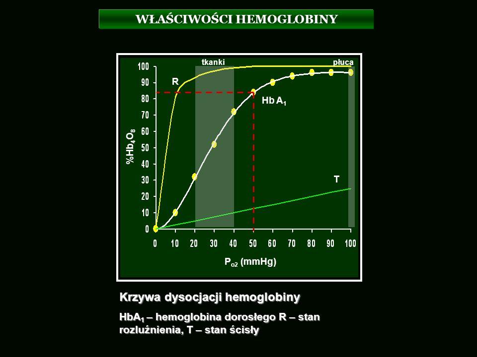WŁAŚCIWOŚCI HEMOGLOBINY