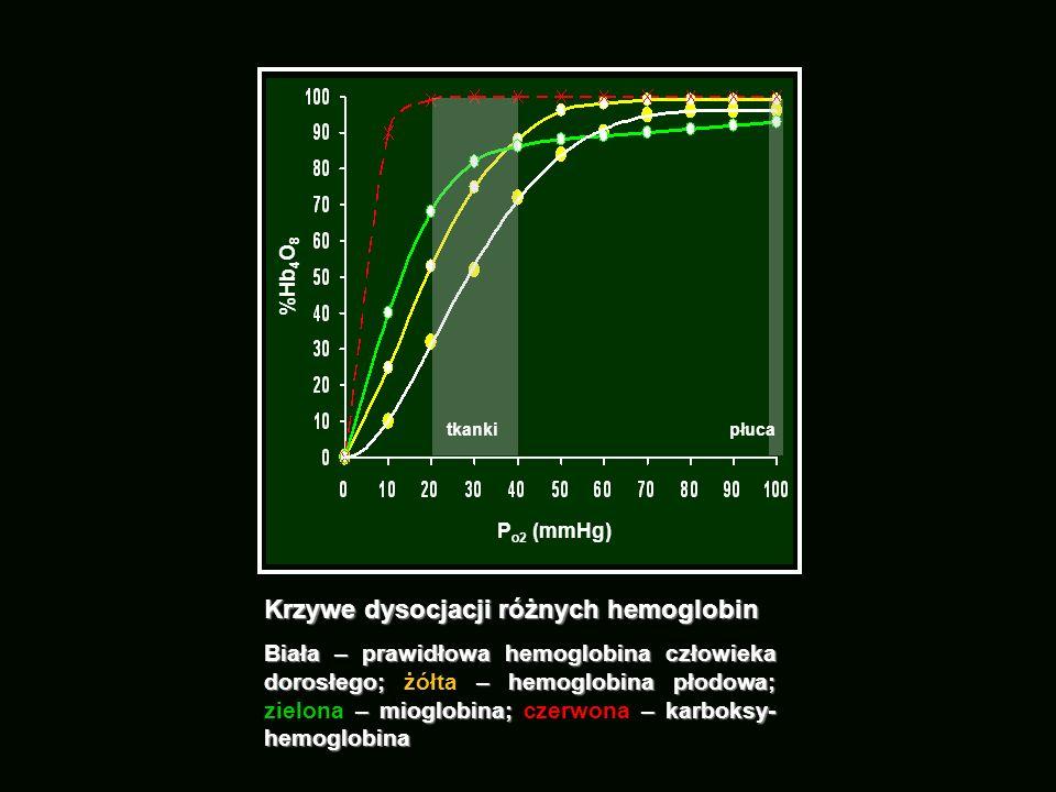Krzywe dysocjacji różnych hemoglobin