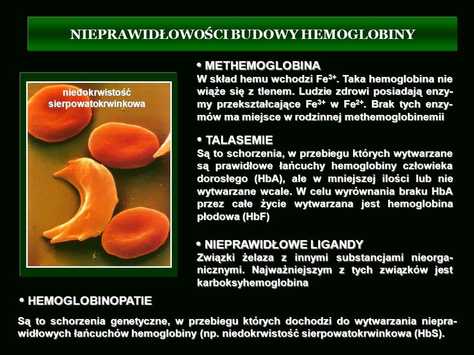 NIEPRAWIDŁOWOŚCI BUDOWY HEMOGLOBINY