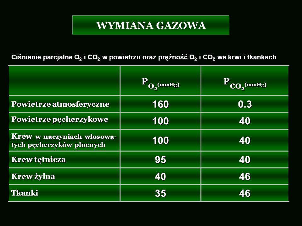 Po2(mmHg) Pco2(mmHg) WYMIANA GAZOWA 160 0.3 100 40 95 46 35
