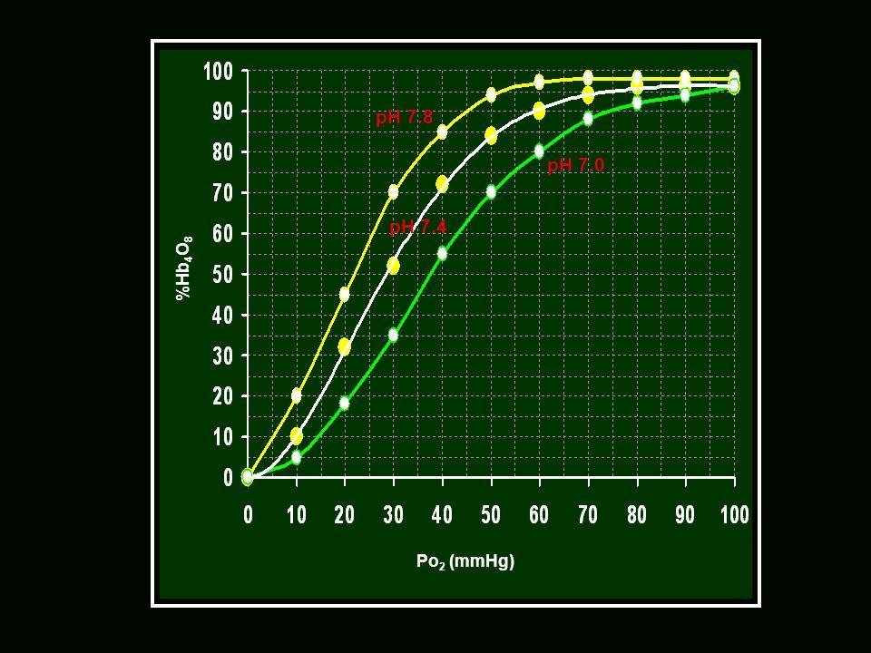 Po2 (mmHg) %Hb4O8 pH 7.0 pH 7.4 pH 7.8