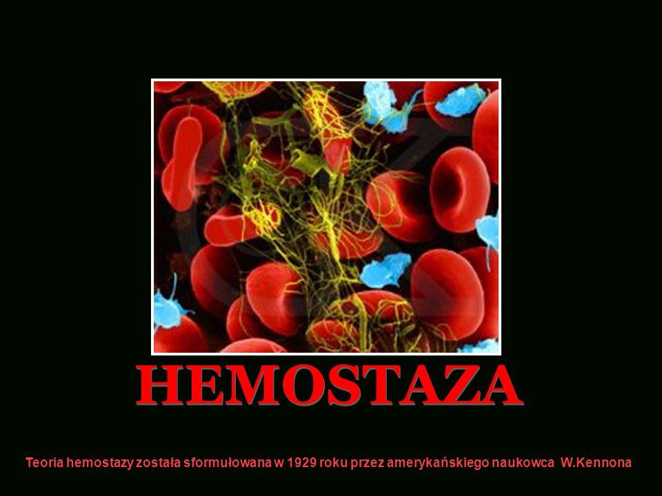 HEMOSTAZA Teoria hemostazy została sformułowana w 1929 roku przez amerykańskiego naukowca W.Kennona.