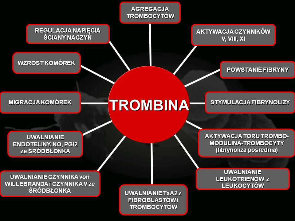 TROMBINA POWSTANIE FIBRYNY