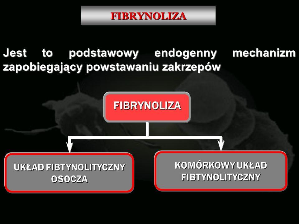 UKŁAD FIBTYNOLITYCZNY OSOCZA KOMÓRKOWY UKŁAD FIBTYNOLITYCZNY