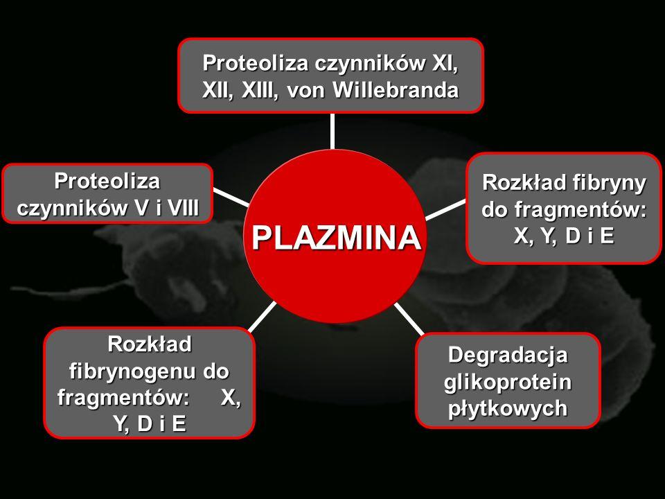 PLAZMINA Proteoliza czynników XI, XII, XIII, von Willebranda