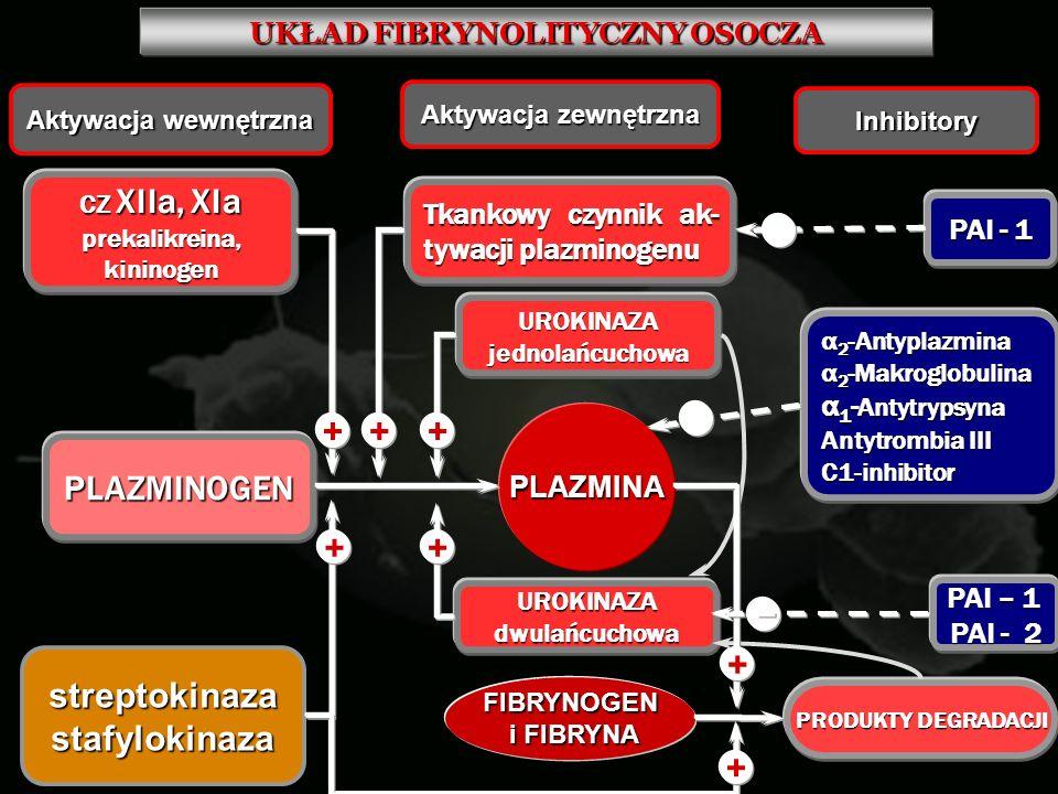  + PLAZMINOGEN streptokinaza stafylokinaza