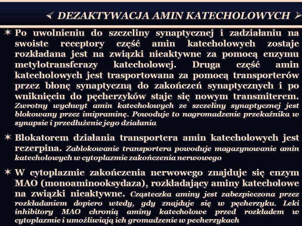  DEZAKTYWACJA AMIN KATECHOLOWYCH 