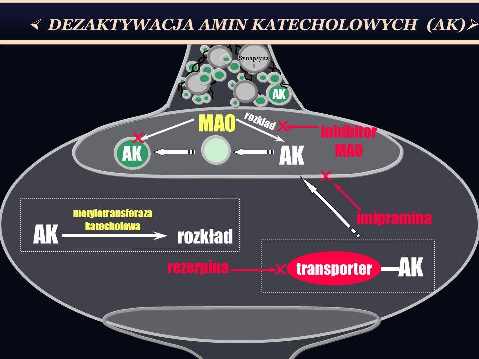 metylotransferaza katecholowa
