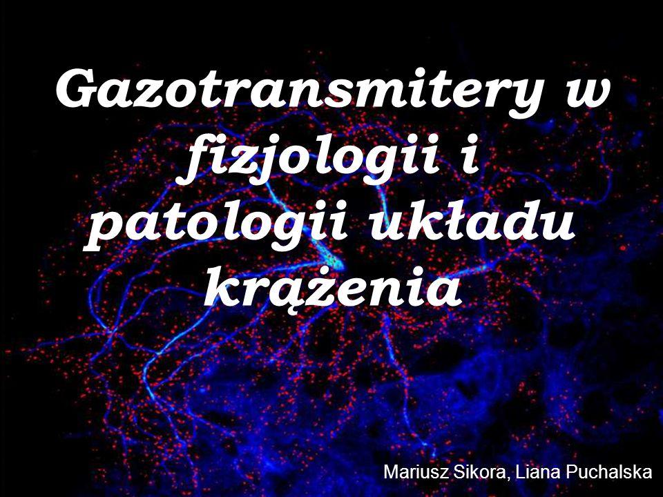 Gazotransmitery w fizjologii i patologii układu krążenia