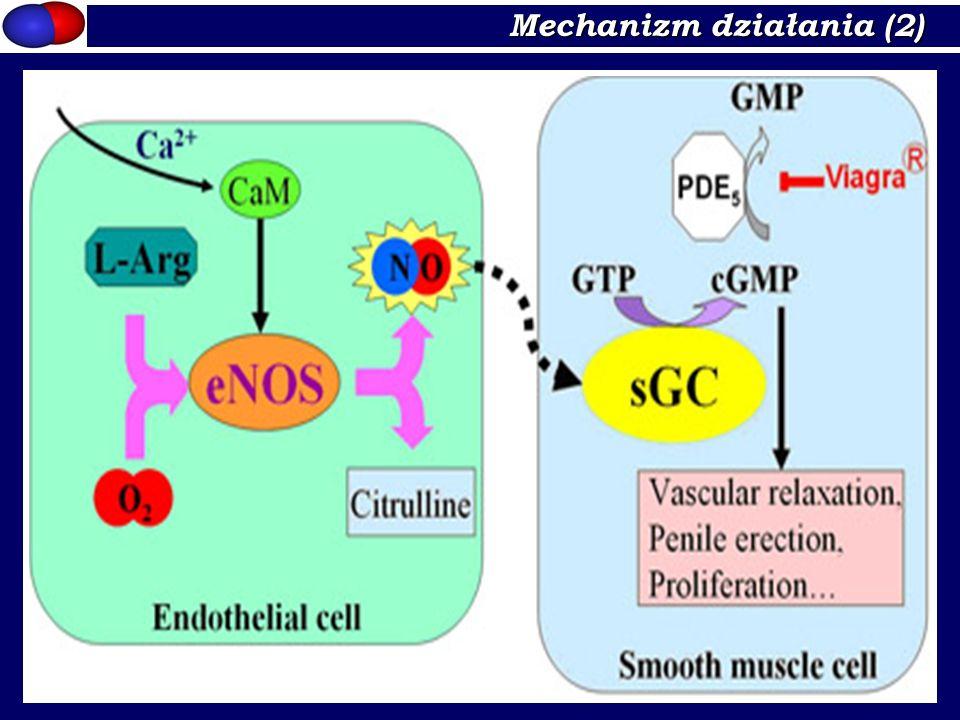Mechanizm działania (2)