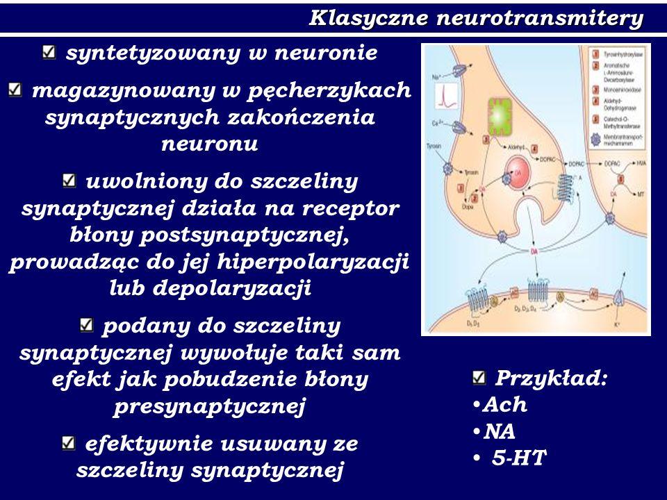 Klasyczne neurotransmitery
