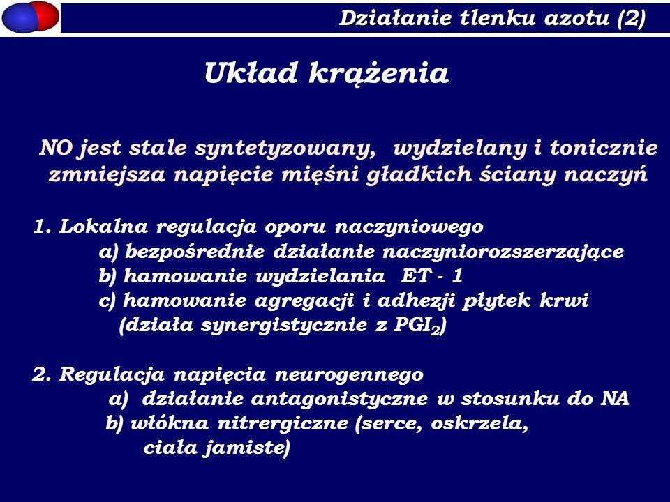 Układ krążenia Działanie tlenku azotu (2)
