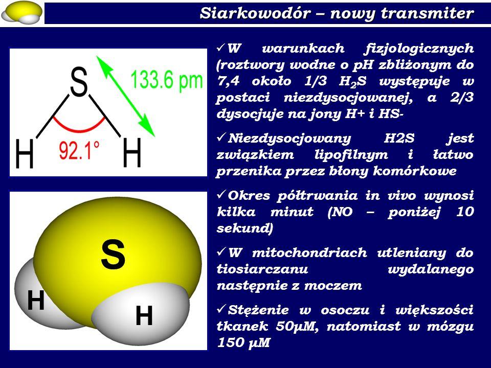S H H Siarkowodór – nowy transmiter
