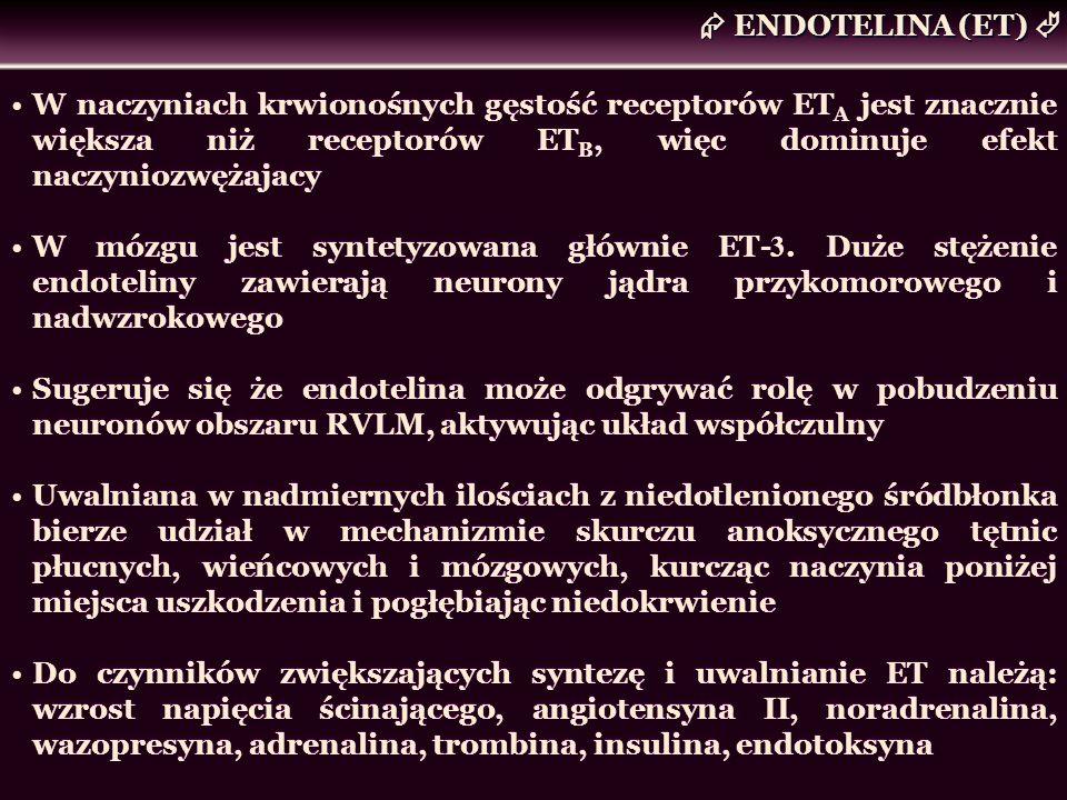  ENDOTELINA (ET) W naczyniach krwionośnych gęstość receptorów ETA jest znacznie większa niż receptorów ETB, więc dominuje efekt naczyniozwężajacy.