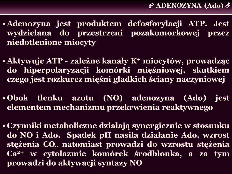  ADENOZYNA (Ado) Adenozyna jest produktem defosforylacji ATP. Jest wydzielana do przestrzeni pozakomorkowej przez niedotlenione miocyty.