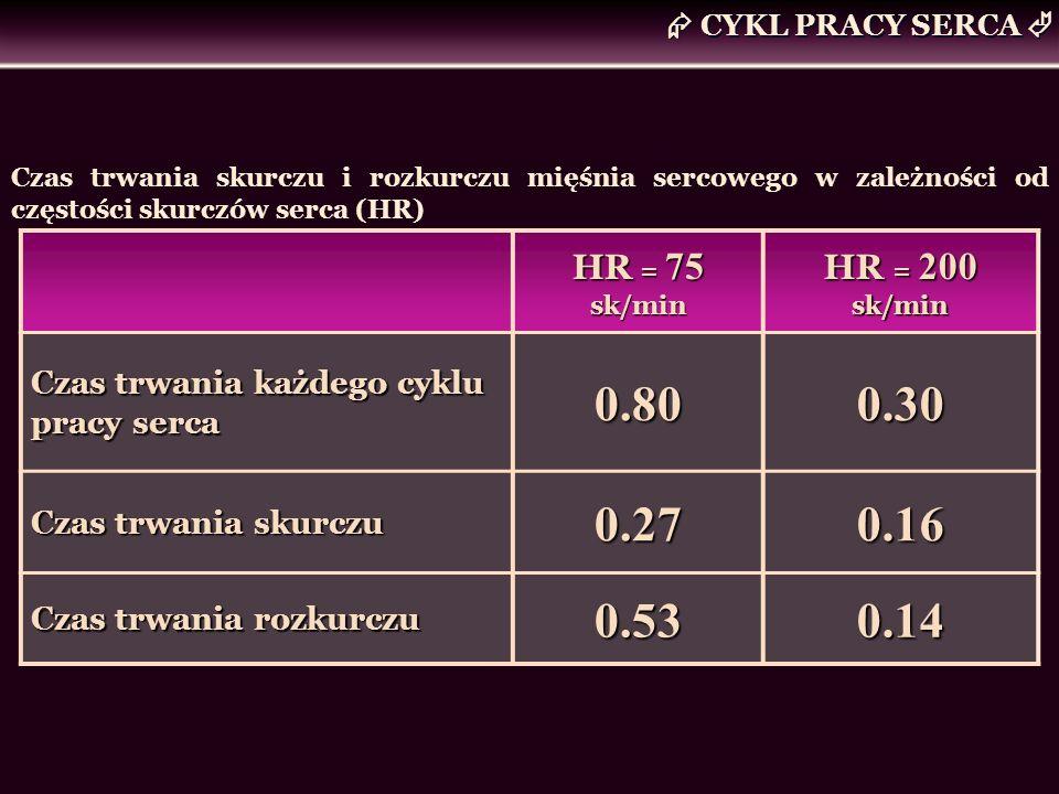 0.80 0.30 0.27 0.16 0.53 0.14  CYKL PRACY SERCA  HR = 75 sk/min