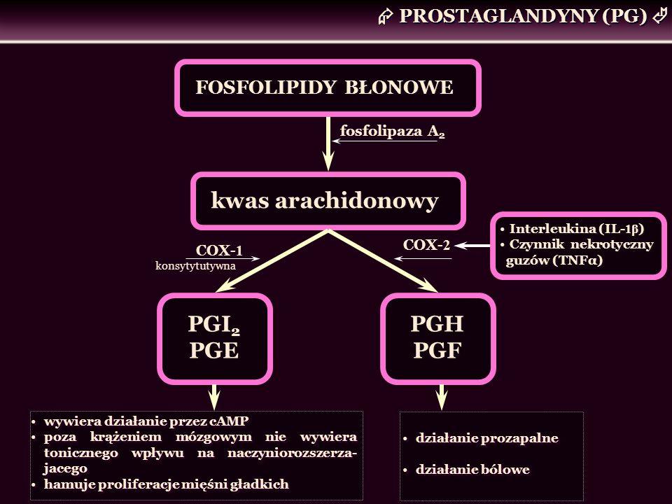  PROSTAGLANDYNY (PG) 