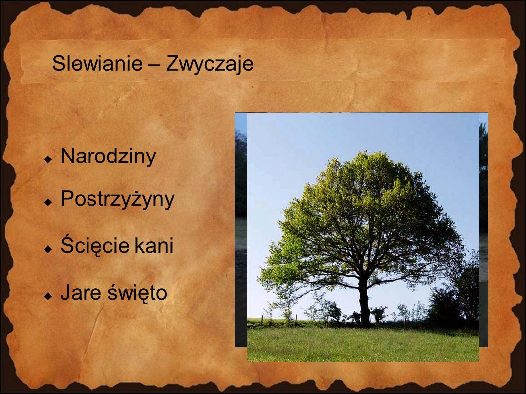 Slowianie – Zwyczaje Narodziny Postrzyżyny Ścięcie kani Jare święto