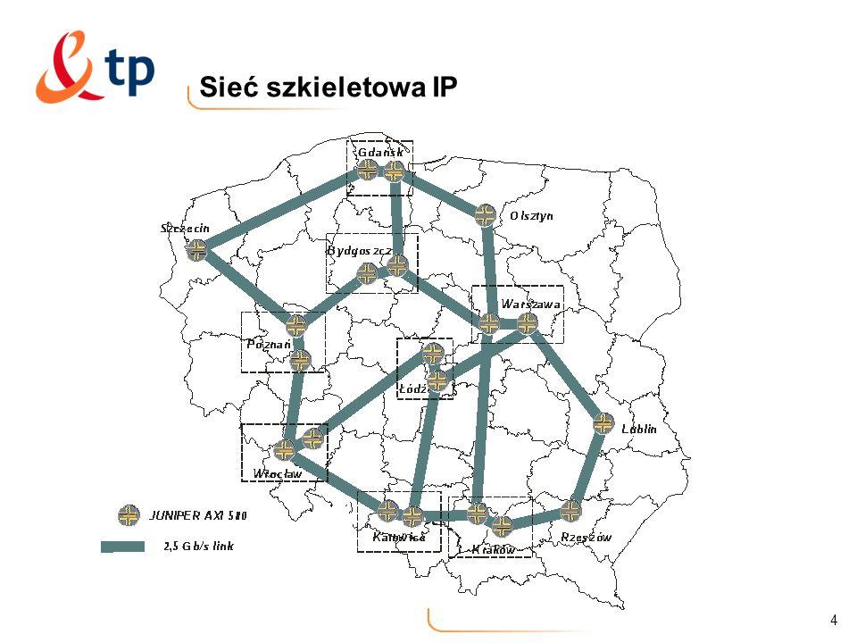 Sieć szkieletowa IP