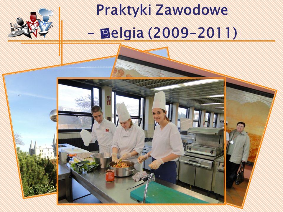 Praktyki Zawodowe - Belgia (2009-2011)