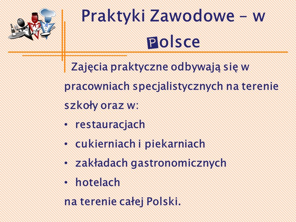 Praktyki Zawodowe – w Polsce