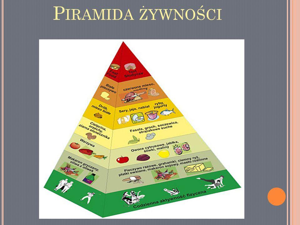 Piramida żywności