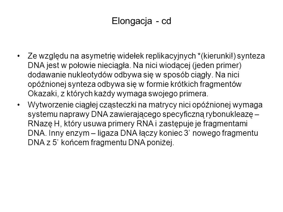 Elongacja - cd