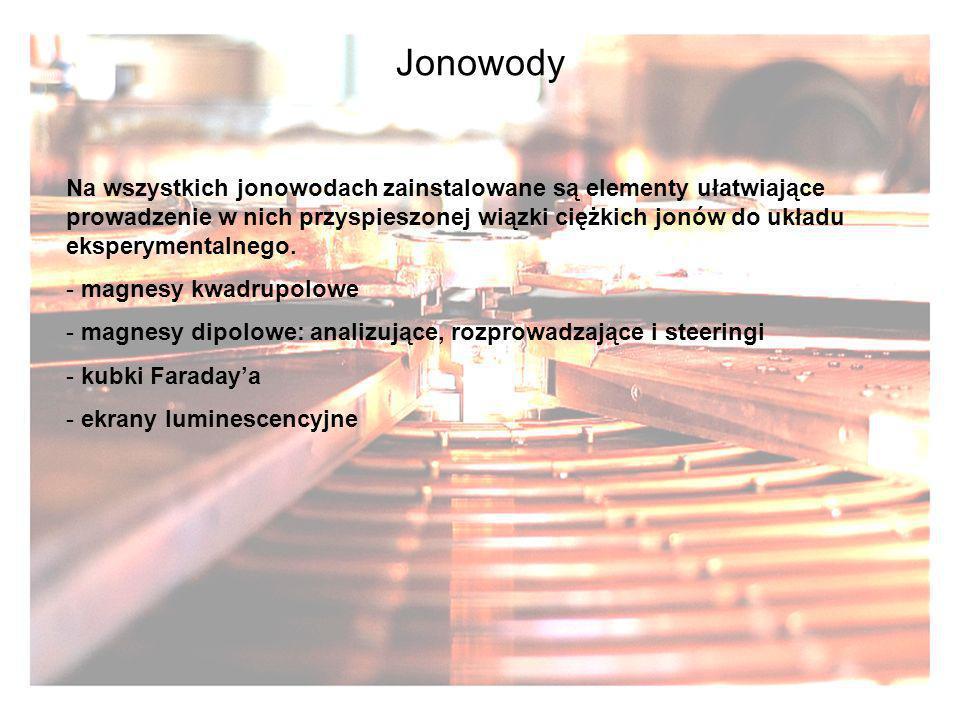 Jonowody