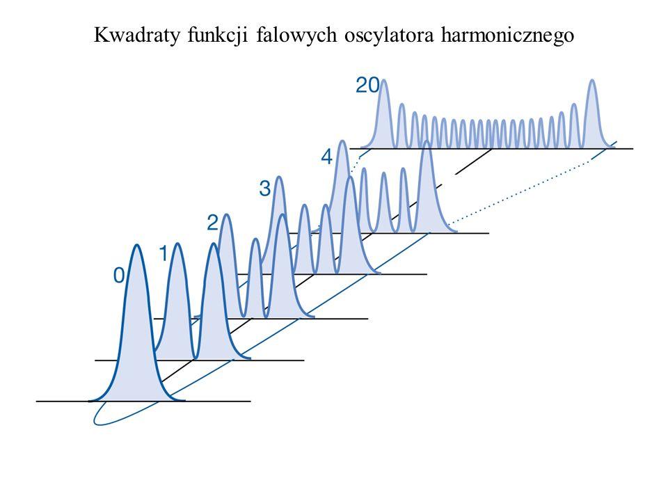 Kwadraty funkcji falowych oscylatora harmonicznego