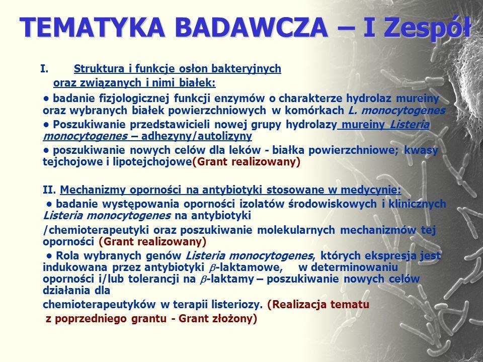 TEMATYKA BADAWCZA – I Zespół