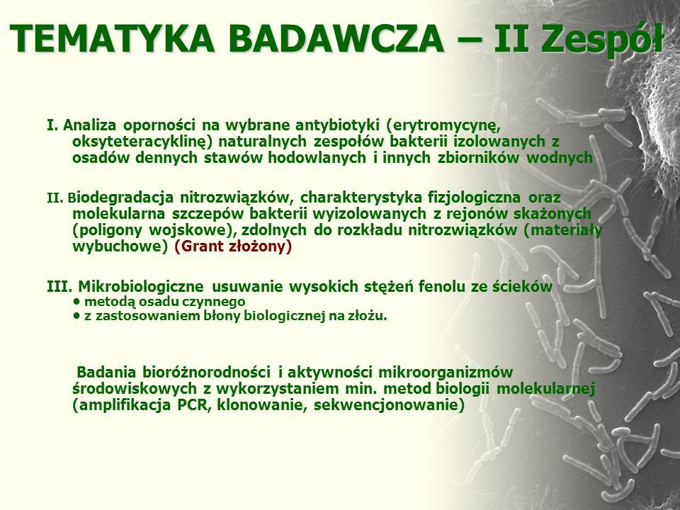 TEMATYKA BADAWCZA – II Zespół