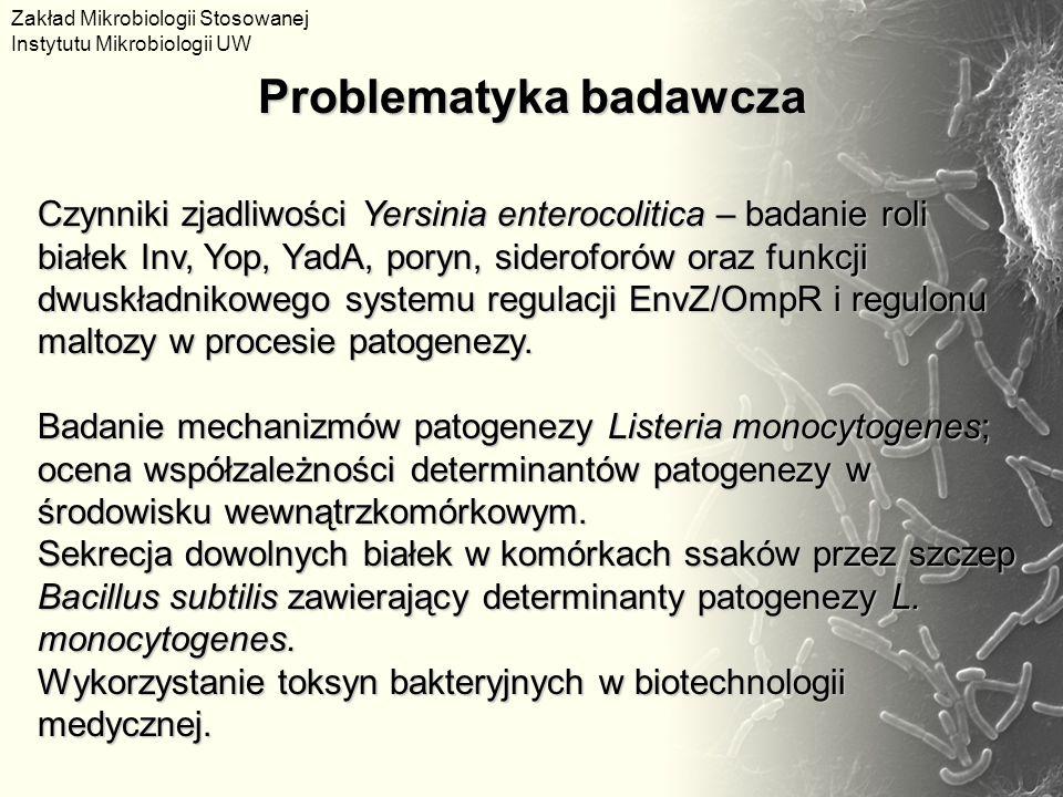 Problematyka badawcza