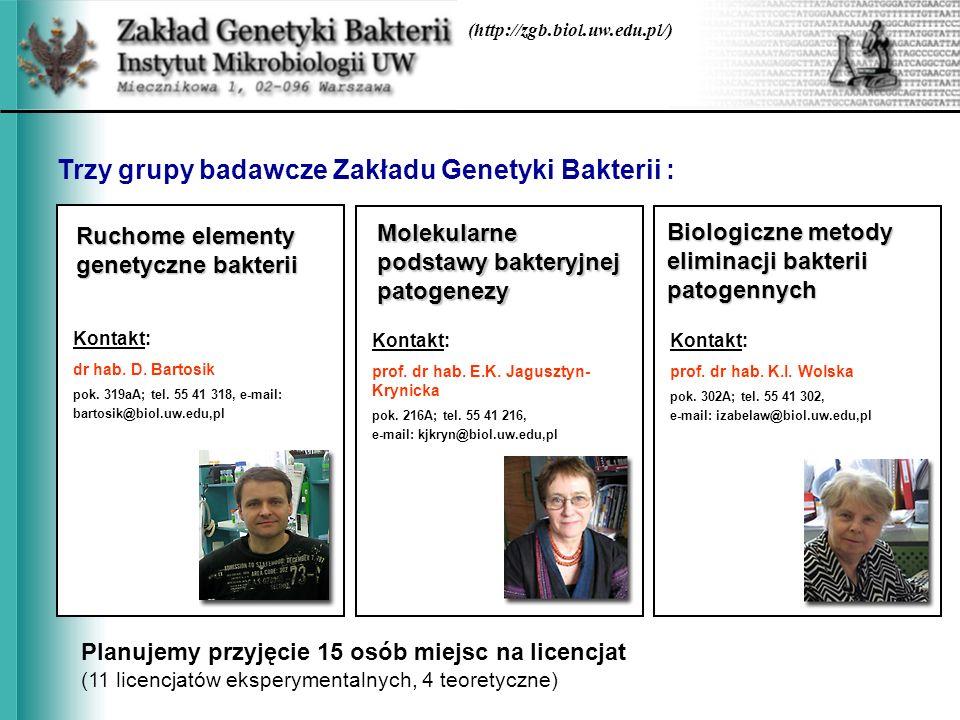 Trzy grupy badawcze Zakładu Genetyki Bakterii :
