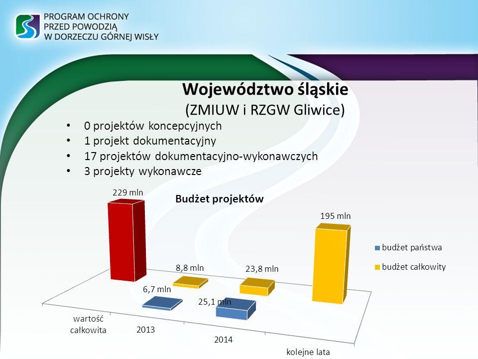Województwo śląskie (ZMIUW i RZGW Gliwice) 0 projektów koncepcyjnych