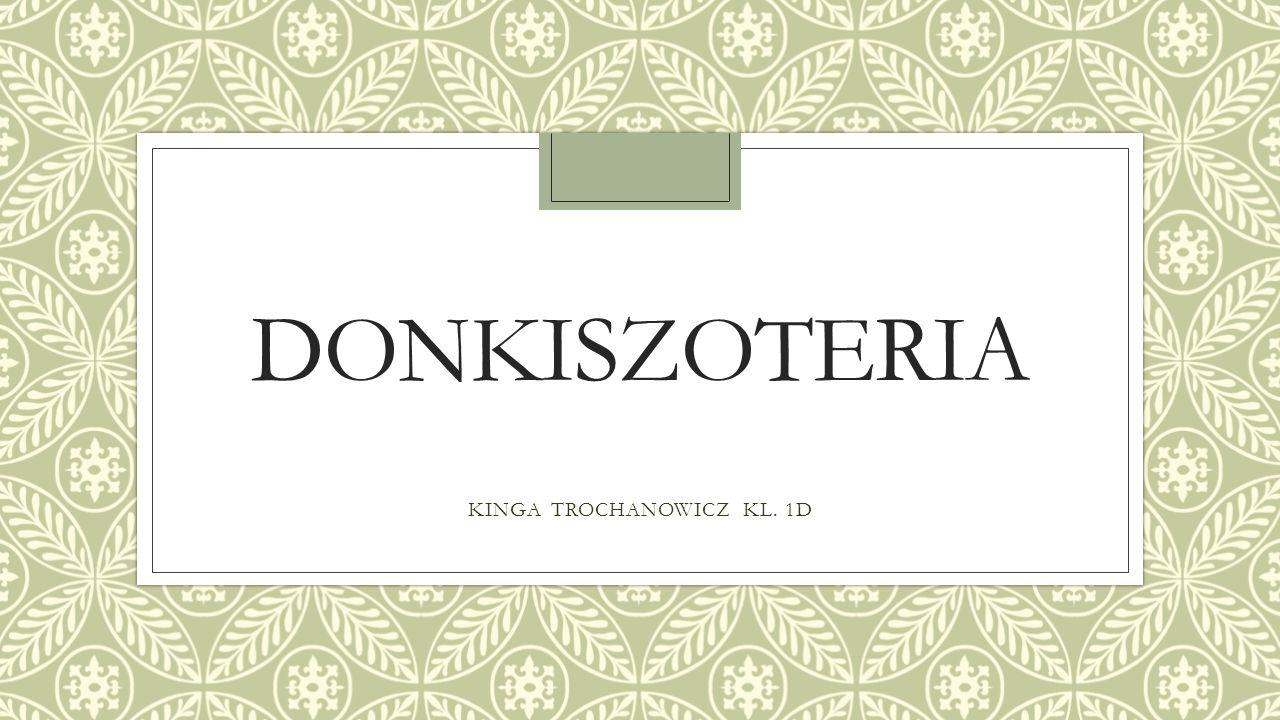KINGA TROCHANOWICZ KL. 1D