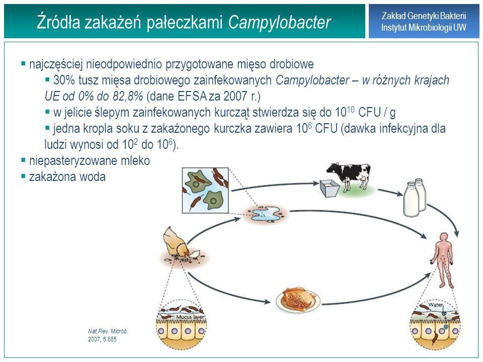 Źródła zakażeń pałeczkami Campylobacter