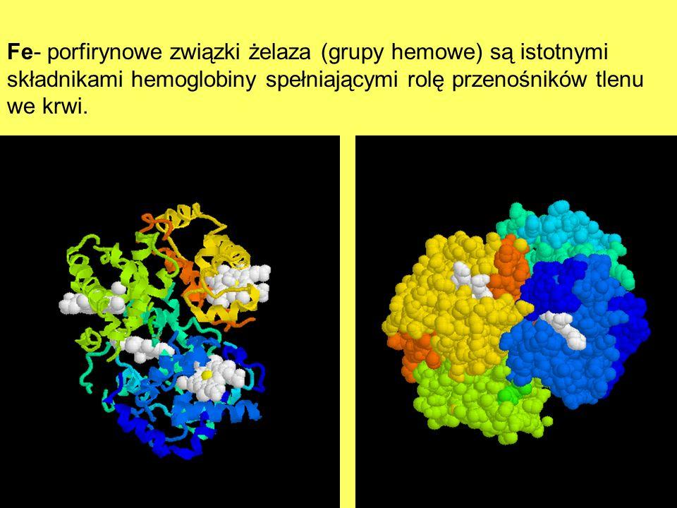 Fe- porfirynowe związki żelaza (grupy hemowe) są istotnymi składnikami hemoglobiny spełniającymi rolę przenośników tlenu we krwi.