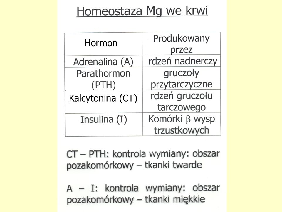 Kalcytonina (CT) Hormon