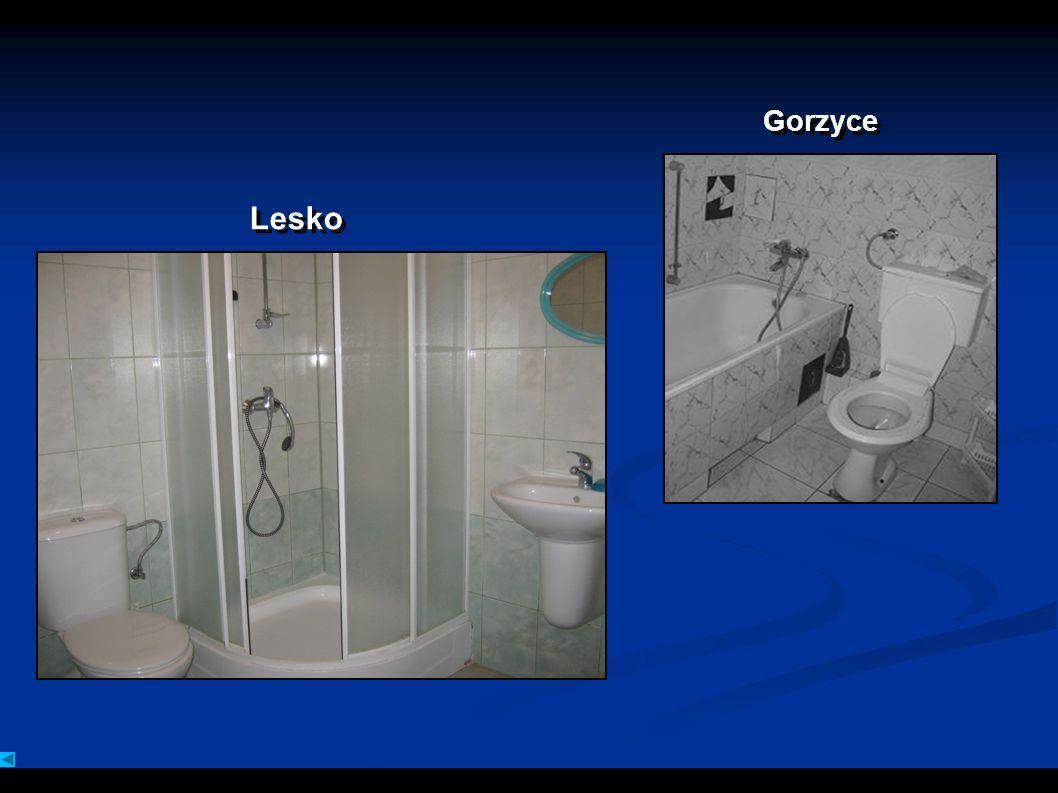 Gorzyce Lesko