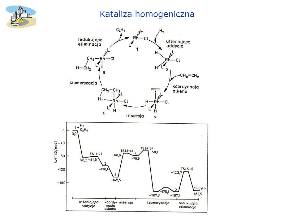 Kataliza homogeniczna