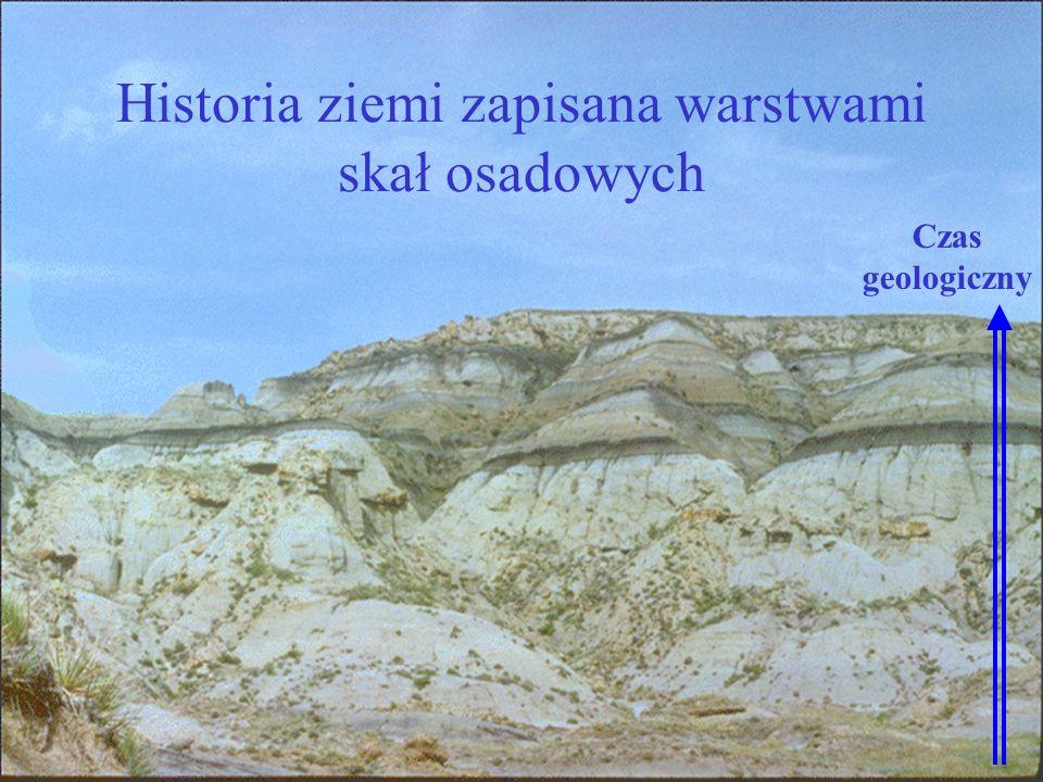 Historia ziemi zapisana warstwami skał osadowych