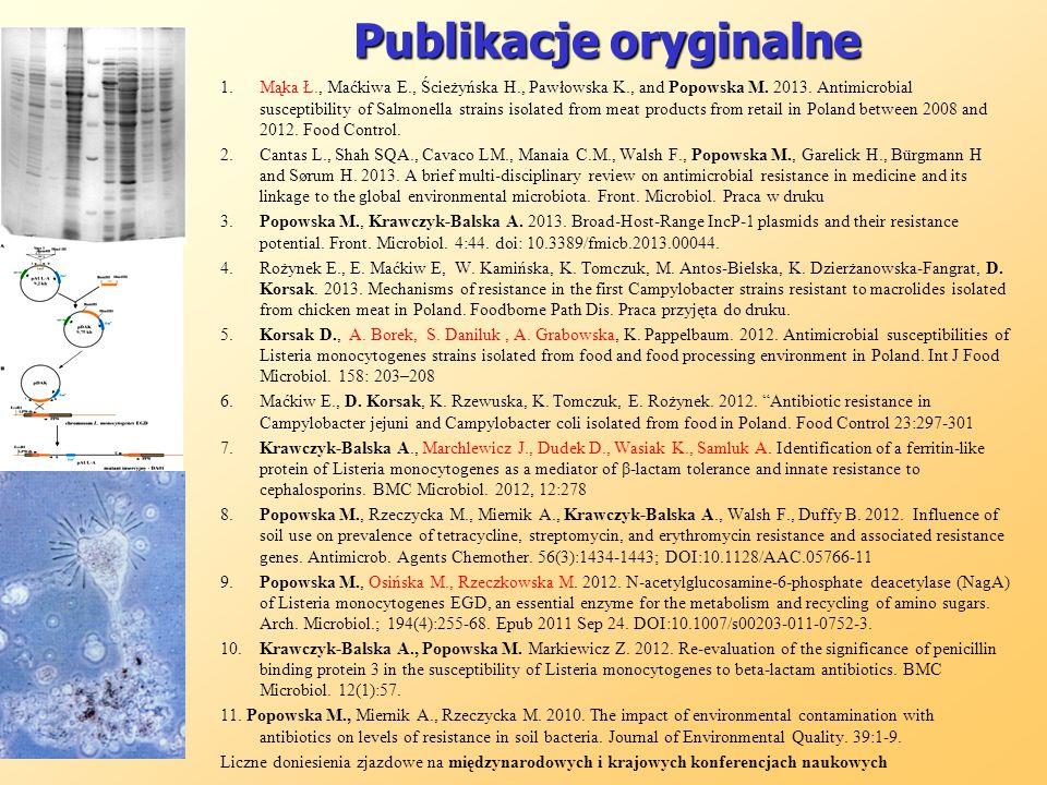 Publikacje oryginalne