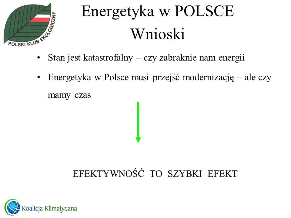 Energetyka w POLSCE Wnioski