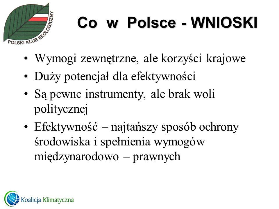 Co w Polsce - WNIOSKI Wymogi zewnętrzne, ale korzyści krajowe