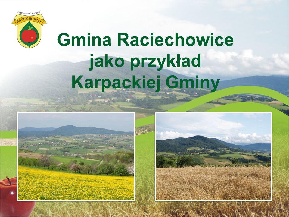 Gmina Raciechowice jako przykład Karpackiej Gminy
