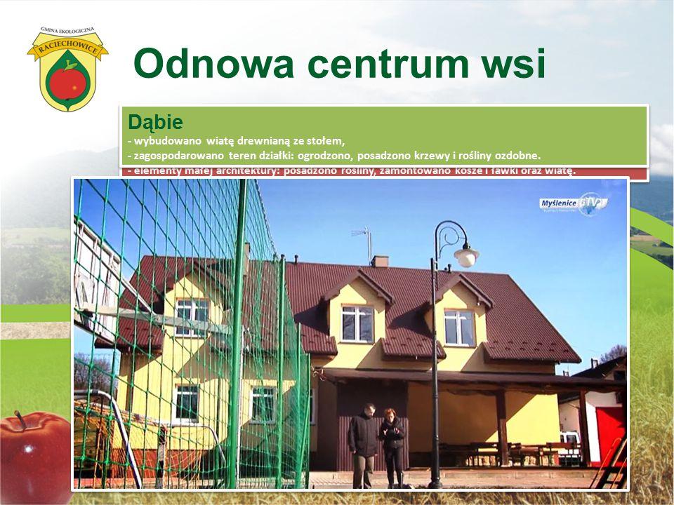 Odnowa centrum wsi Dąbie Kwapinka