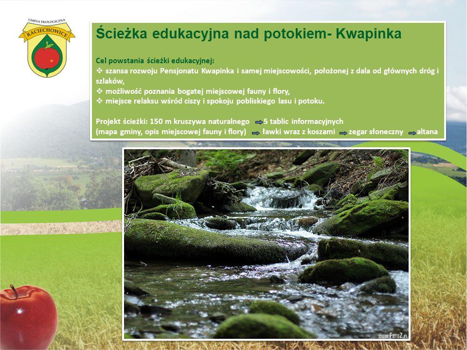 Ścieżka edukacyjna nad potokiem- Kwapinka